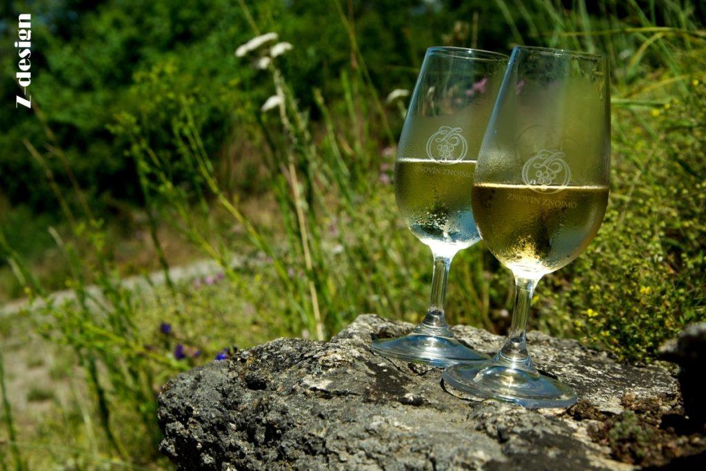 znovín, vinice Šobes 2